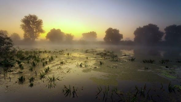 Thumbnail for Sunrise On The Lake