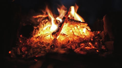 Les charbons vivants