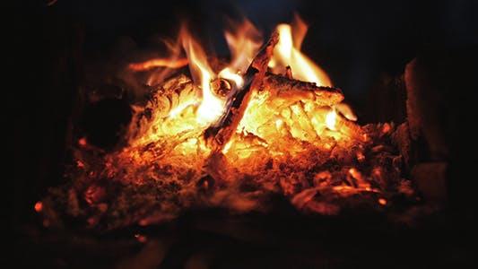 Thumbnail for Live Coals