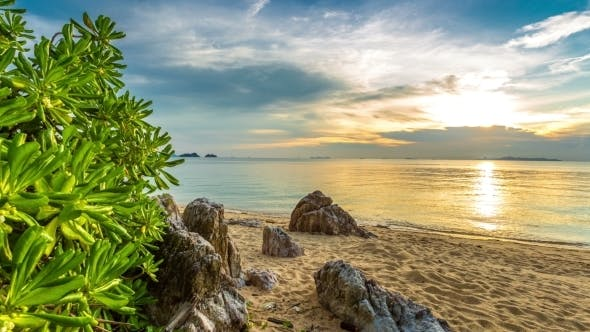 Cover Image for Sunset On The Rocky Beach Overgrown With Plants, Koh Samui, Thailand