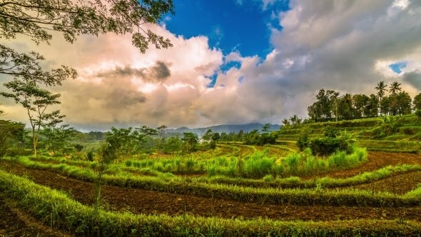 Thumbnail for Sunset And Clouds Over Rice Terraces. 15 July 2015, Bali, Indonesia