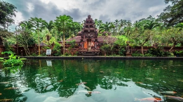 Cover Image for Fish Pond On The Background Of The Temple in Bali, Indonesia