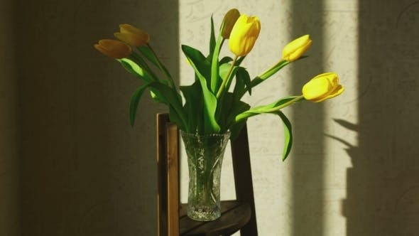 Cover Image for Faded Yellow Tulip Buds Raised