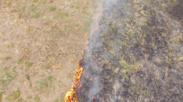 Thumbnail for Agricultural Field In Fire