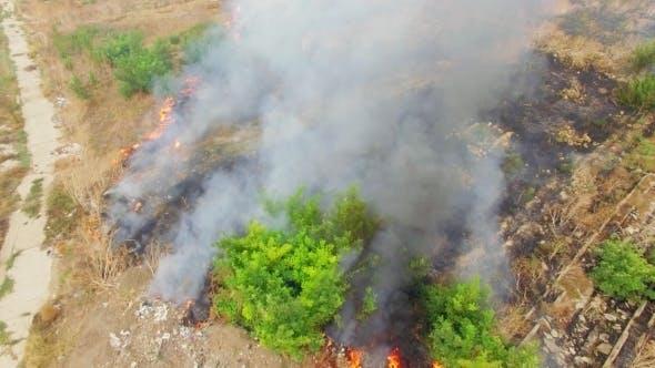 Thumbnail for Burning Fields In Heavy Smoke
