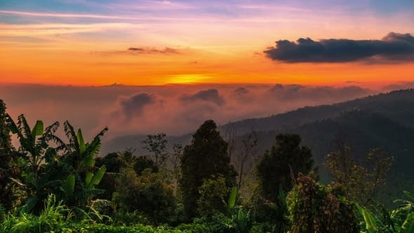 Cover Image for Sunset in The Mountains Turns Into Night in Bali, Indonesia
