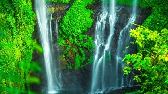 Thumbnail for Sekumpul Waterfall High About 80 Meters Or 262 Feet Tall