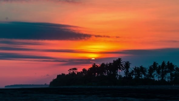 Thumbnail for Sunset on The Background of Palm Trees in Bali, Indonesia