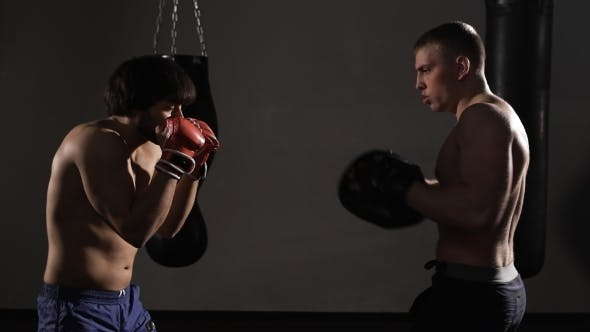 Thumbnail for Artful Young Kickboxer Fulfills Blows With Coach.