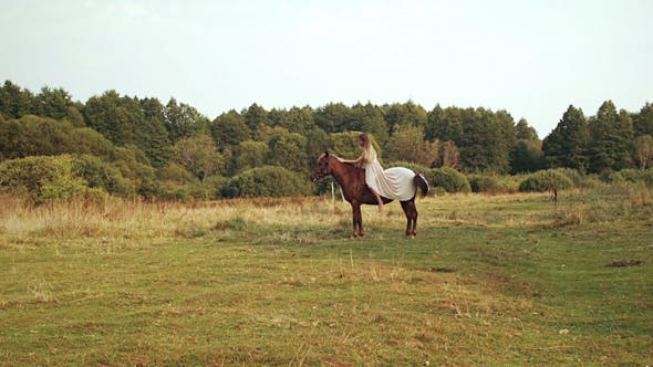 Thumbnail for Girl Stroking a Brown Horse In Field