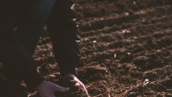 Thumbnail for Farmer Hands Holding And Pouring Back Organic Soil.