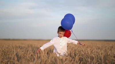 Cute Boy Walk in the Wheat Field with Balloons