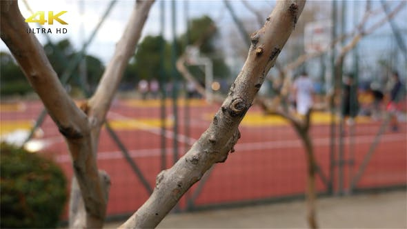 Thumbnail for Playing basketbal In The Park