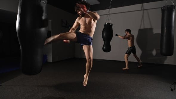 Two Trained Kickboxer