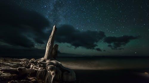 Star , Milky Way Galaxy