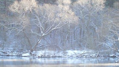 Sunny Mood Smoke Over The River