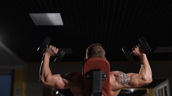 Thumbnail for Portrait Of a Fitness Man Doing Exercises With Dumbbells At Gym