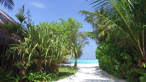 Access To Sea On Maldives Beach