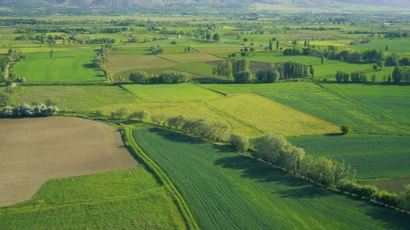 Thumbnail for Agricultural Aerial View