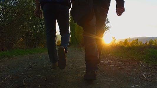 Cover Image for Walk