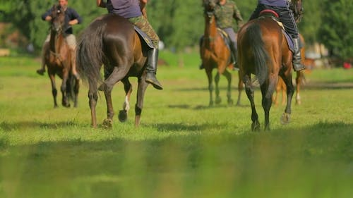 Russian Cossacks At Rehearsal Of Equestrian Formation
