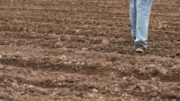 Thumbnail for Farmer Walking On Farm Land, Planning New Seeding Season