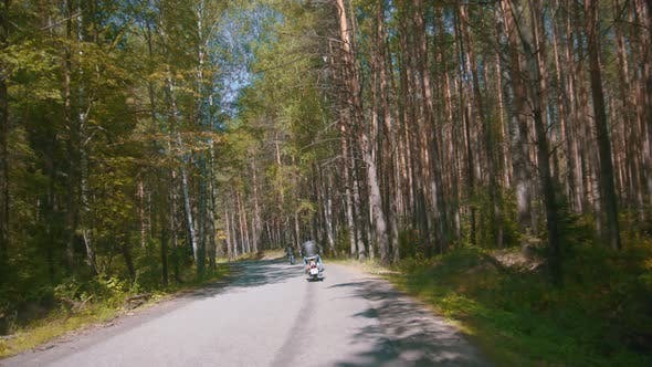 Thumbnail for Two Motorcyclists Riding Their Motorbikes in the Coniferous Forest