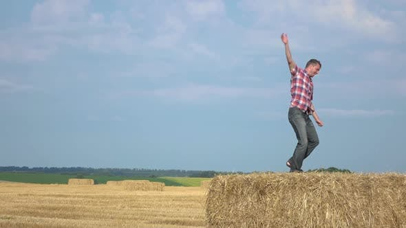 Cover Image for Dancing on the Hay