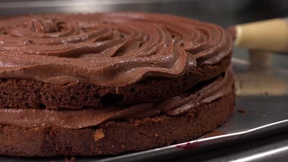 Thumbnail for Dark Cake Base with Chocolate Frosting - Closeup