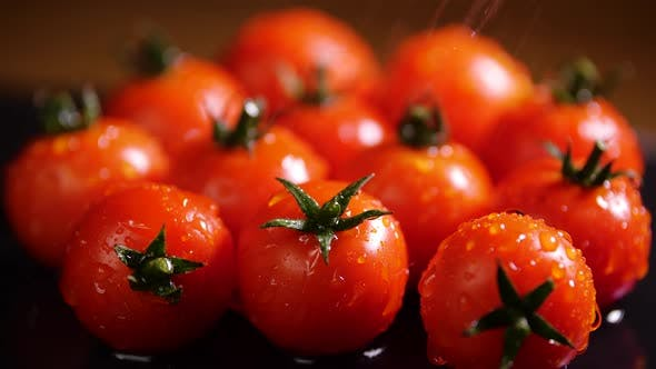 Thumbnail for Red Tomatoes With Drops of Water, Macro Video, Organic Vegetables Food, Organic Harvest in Garden