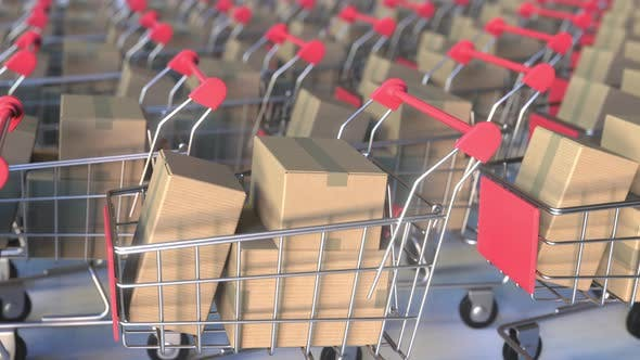 Thumbnail for Many Shopping Carts Loaded with Boxes