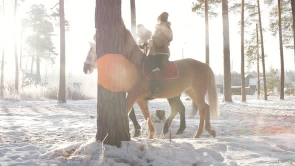 Thumbnail for Couple Riding Horses in Countryside on Winter Day