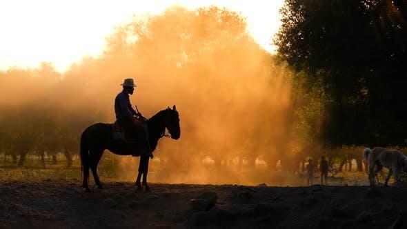 Thumbnail for Cowboy At Sunset