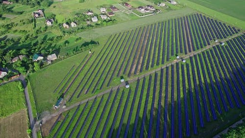 Rows of Photovoltaic Solar Cells