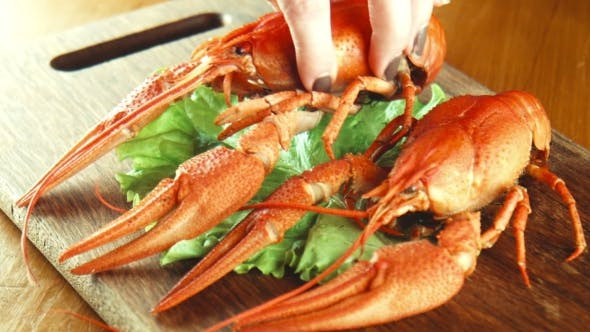 Crayfish Lobsters On a Tray