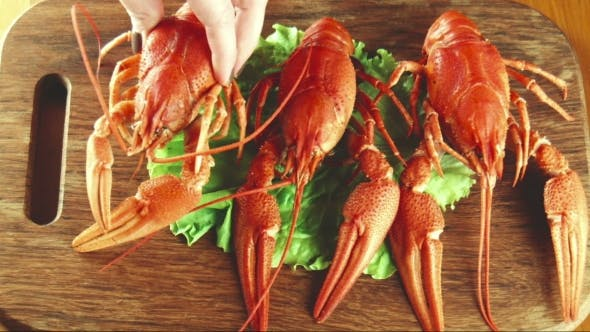 Thumbnail for Crayfish Lobsters On a Tray
