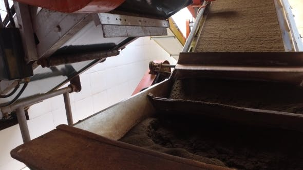 Thumbnail for Tea Moving On Machine Conveyor At Factory 51