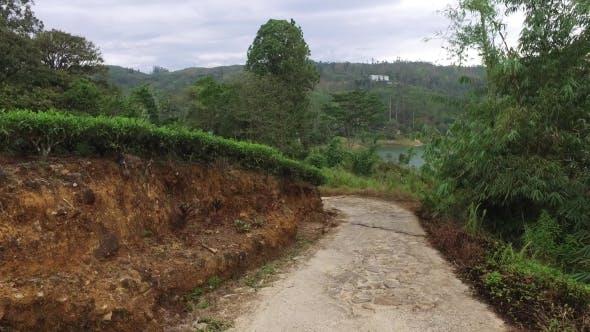 Thumbnail for Country Road On Sri Lanka 23