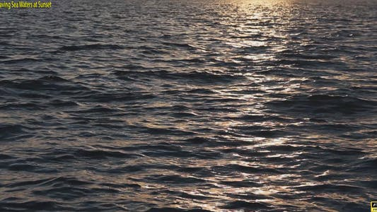 Thumbnail for Golden Waving Sea Waters at Sunset