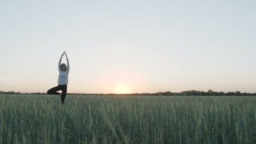 Yoga Vrikshasana Tree Pose By Woman In Field