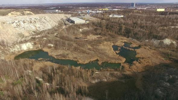 Swamp And Landfill
