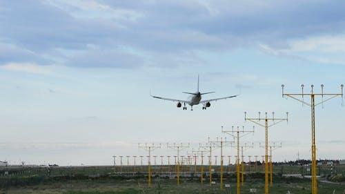 Airplane Landing in Airport Runway