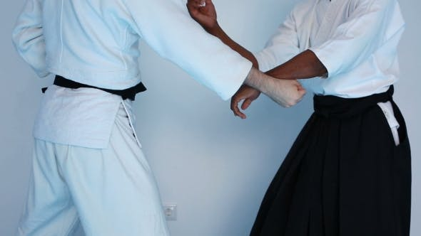 Thumbnail for Two Men In Black Hakama Practice Aikido On Martial Arts Training