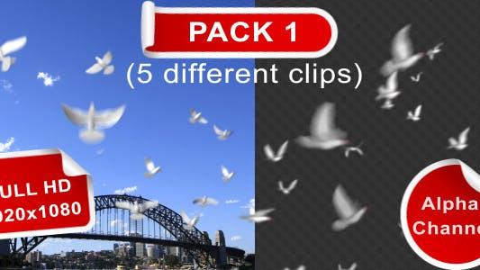 Thumbnail for Flying Doves (pack Vol.1)