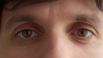 Closeup on Face of Happy Man Shot in Studio