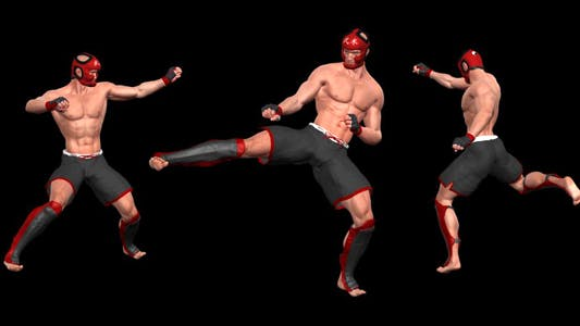 Martial Art - Male Fighter - Combo 04
