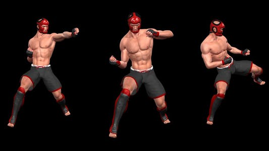 Martial Art - Male Fighter - Combo 05