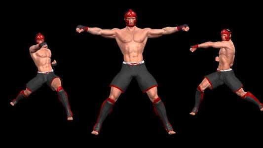 Martial Art - Male Fighter - Combo 06