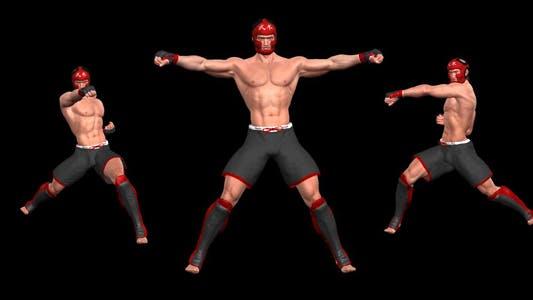 Kampfkunst - Male Fighter - Combo 06