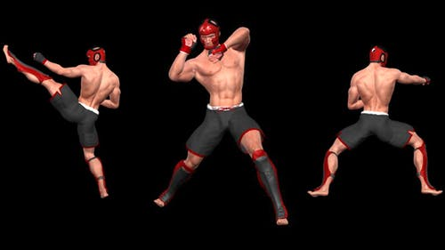 Martial Art - Male Fighter - Kanku